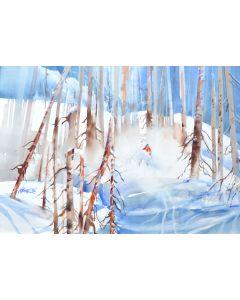 Sans titre1 - Skieur