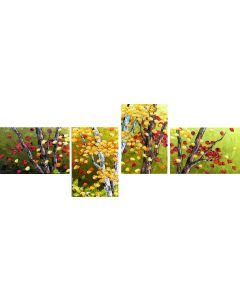 Splendide automne - quadriptyque- sans cadre